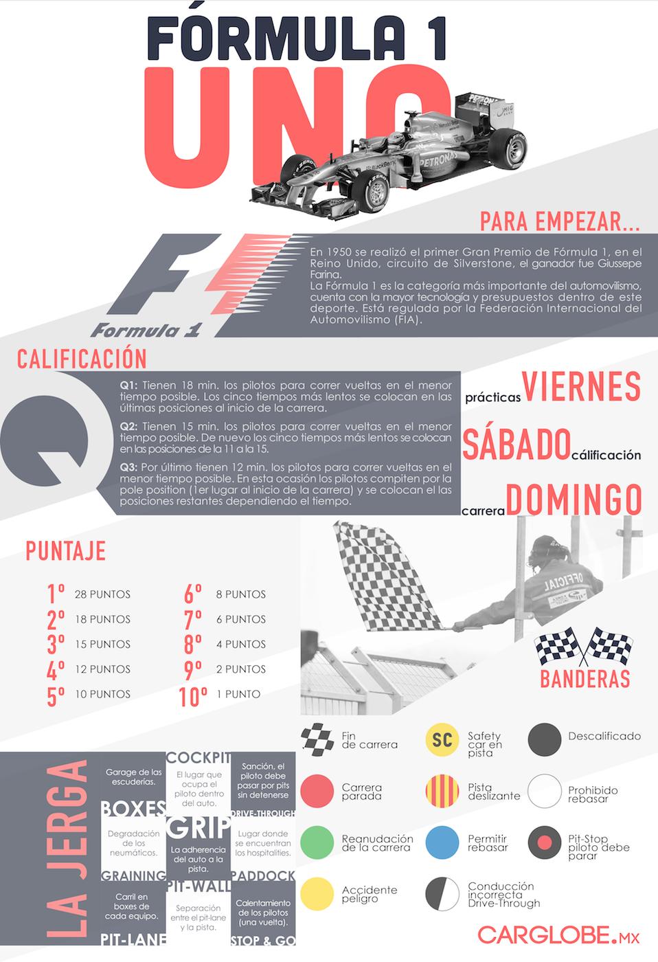 Manual F1